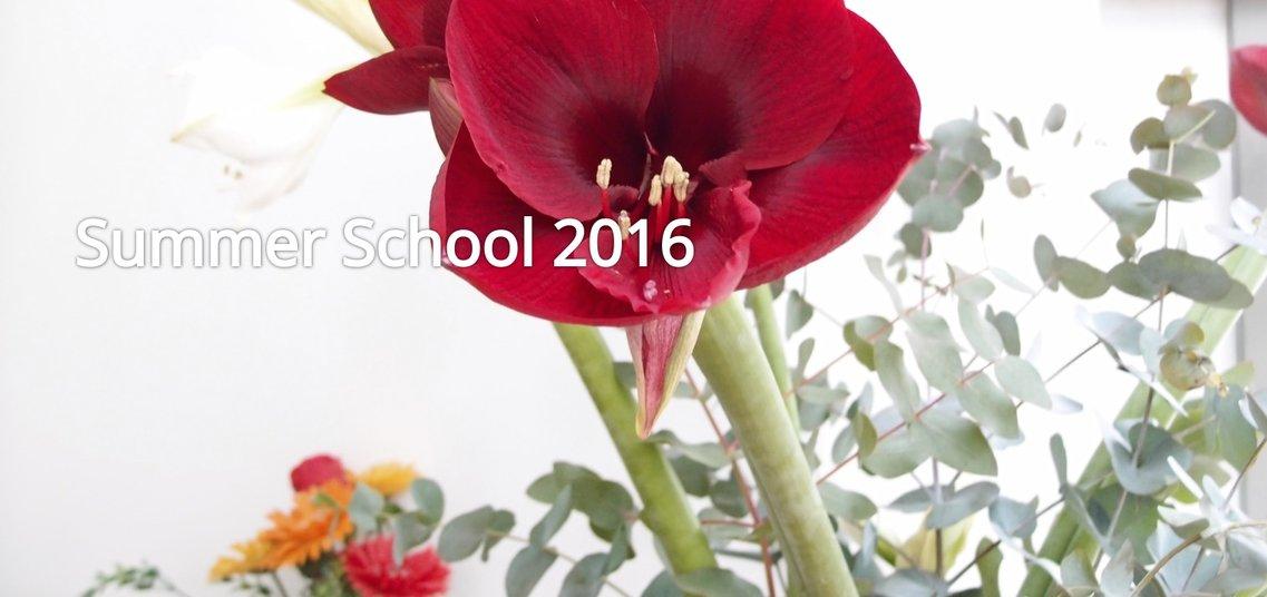 Dutch Summer School 2016