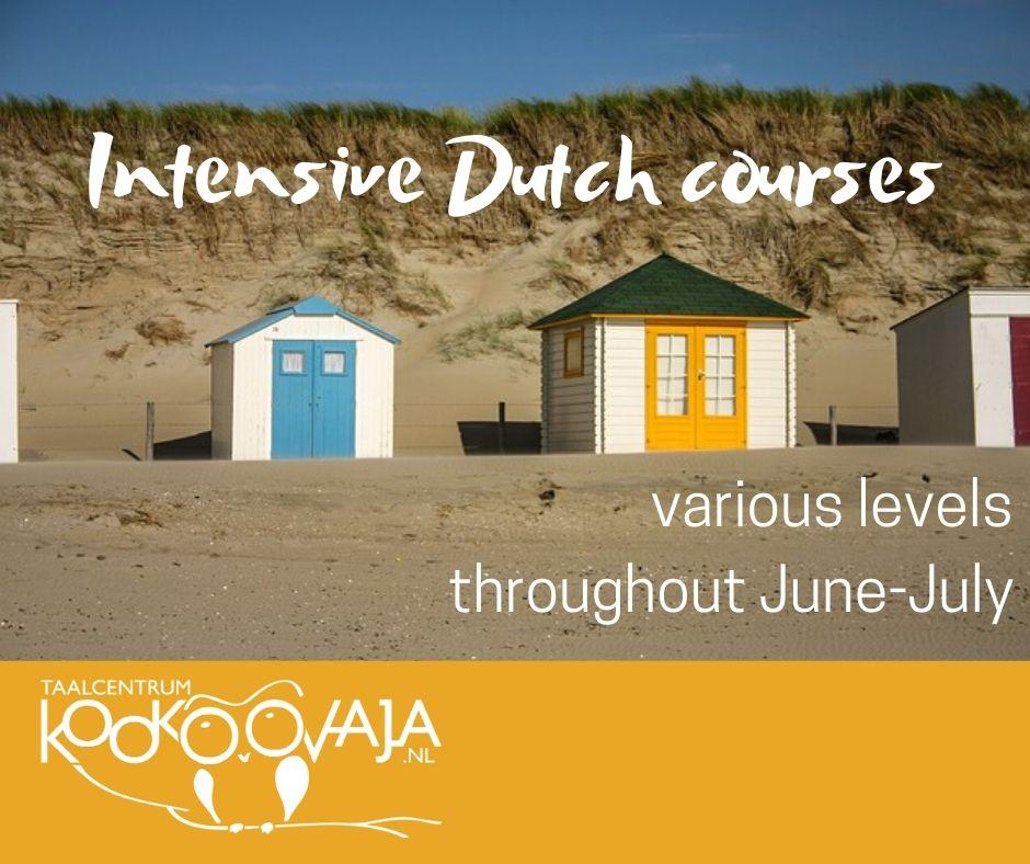 Start online intensive Dutch course